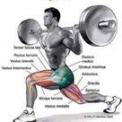 Muscle group worked during this exercise