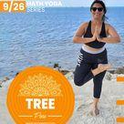 Hath Yoga Pose 9