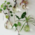 DIY Deko aus Glühbirnen   120 Bastelideen für alten Glühbirnen