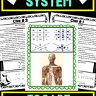 Muscular System ESCAPE ROOM Activity   Human Body Systems   5th grade science   6th grade science