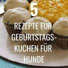 Geburtstagskuchen für Hunde: 5 leckere & gesunde Rezepte