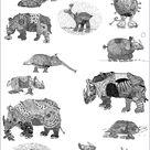 Albrecht Dürer, Pietro Longhi, Jean-Baptiste Oudry und »Clara«, das Rhinozeros