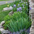 Vorgarten gestalten pflegeleicht: 41 Beispiele für moderne Vorgärten