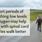Researchers Discover Promising New Treatment to Help People with Spine Injuries Walk Better