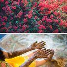 Jaipur Wedding   Traditional Wedding   Real Wedding Inspiration & Ideas from Swathi & Stefan Wedding