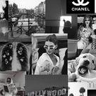 Black & white wallpaper ~ collage