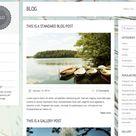 LiteThemes - Top WordPress themes and news