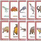 Dinosaur Flashcards - Aussie Childcare Network