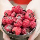 Chocolate Filled Raspberries   Sugar and Charm