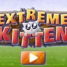 Extreme Kitten on PrimaryGames.com