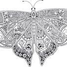 vlinder21 - TopKleurplaat.nl