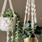 Plant Hanger Set of 4