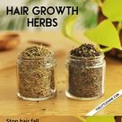 2 BEST HERBS to stop hair fall and treat thinning hair   The Little Shine