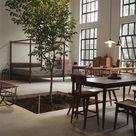 Tree Interior