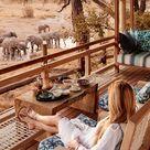 Belmond Safari