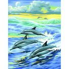 Junior Paint By Numbers Dolphin