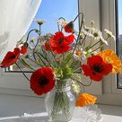 Floral arrangement Colorful bouquet Daisy flowers Clay flowers Wild flowers Home decor Poppy Gift Cold porcelain Table vase flowers