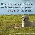 Pet Loss Quotes