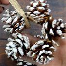 Mini Star Pinecone Ornaments