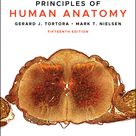 Principles of Human Anatomy   15th Edition eBook Rental