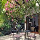 Gartenlaube und Pergola begrünen   Welche Pflanzen eignen sich