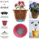 Bloem 20-56420 Fiskars 20 Inch Ariana Planter with Self-Watering Grid, Thyme, 20