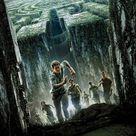 The Maze Runner (2014) Phone Wallpaper   Moviemania