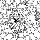 Mundo De Desenhos Para Colorir: Homem Aranha (Spider Man)