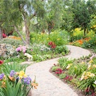 Wild Flower Gardens