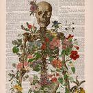 Doctor gift Anatomy Wall Art  Flower Skeleton  Human | Etsy