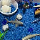Ocean Sensory Bin   Shark Sensory Bin   Sea Creature Sensory Bin   Sensory Kit   Montessori