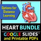 Heart BUNDLE {Editable and Options for Differentiation}