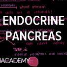 Endocrine pancreas | Gastrointestinal system physiology | NCLEX-RN | Khan Academy