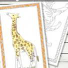 FREE Jumbo Coloring Pages for Kids...Giant Fun!