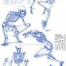 Skeletal Sketchdump by Quarter-Virus on DeviantArt