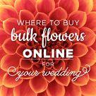 Wedding Online