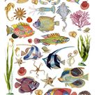 Tropical Fish Printable Digital Collage Sheet, Fishes Clip Art Download