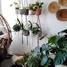 Cozy Home Decor, Boho Hygge Decoration, Bohemian Indoor Plants Styling, Houseplants Egg Chair Basket