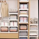 Wardrobe Storage Box
