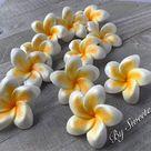 Gum Paste Hawaiian Plumeria weiß und gelb 6 Blumen Gumpaste | Etsy