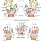 Hand Reflexology: spine corresponds with radial thumb, extremities with ulnar hand!