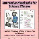 Anatomy interactive notebook