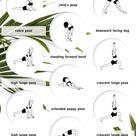 Full Body Stretch Yoga Flow