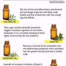 What You Should Do About Hair Loss and Brittle Nails Treatment   Healthy Medicine Tips essentialoilsforhairgrowth