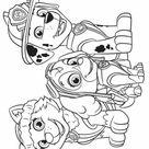 Desenhos da Patrulha Canina para colorir, pintar e imprimir