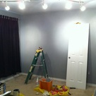 Grey Wall Paints