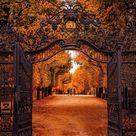 Always Autumn: Photo