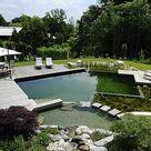 Schwimmteich im Garten: So sparen Sie Kosten