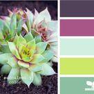 Best Color Combinations