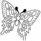 Kleurplaten vlinders - TopKleurplaat.nl